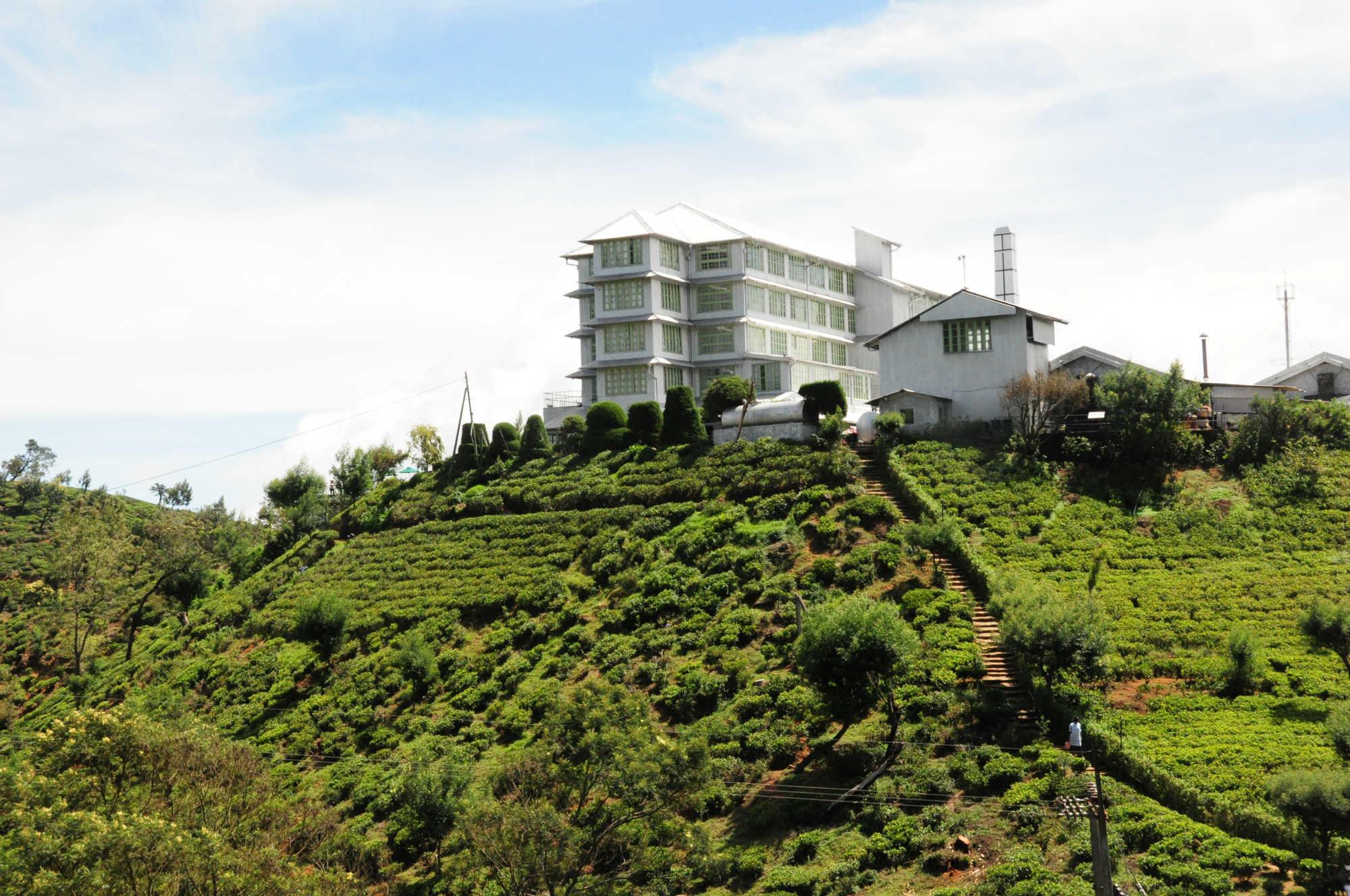 紅茶の国スリランカが生んだユニークなホテル「ヘリタンス ティーファクトリー」